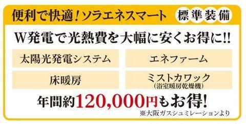 大阪ガスソラエネ(キャッチ).jpg.jpg