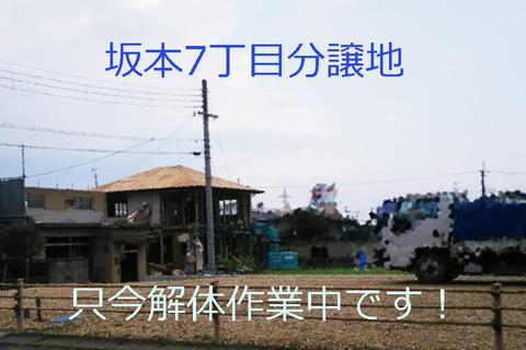 R010916-1.jpg